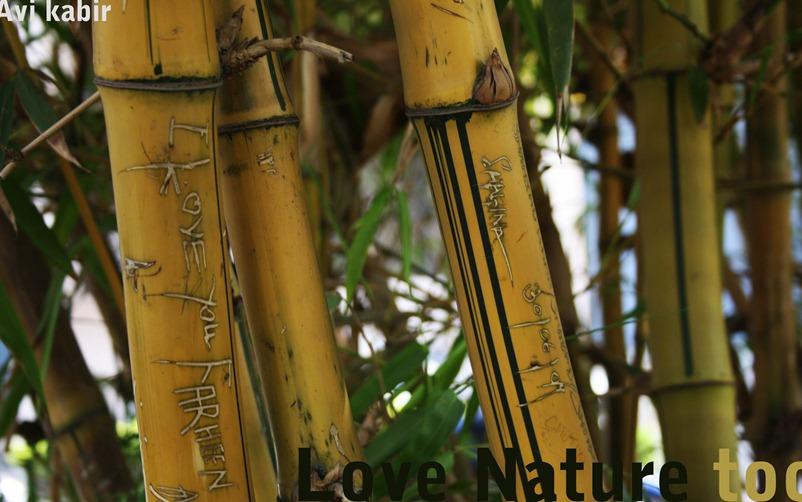 Love nature too
